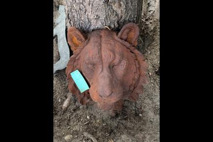 lion head for sale in iron Medussa:0404